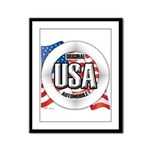 USA Original Framed Panel Print