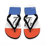 2012 Election RWB Flip Flops