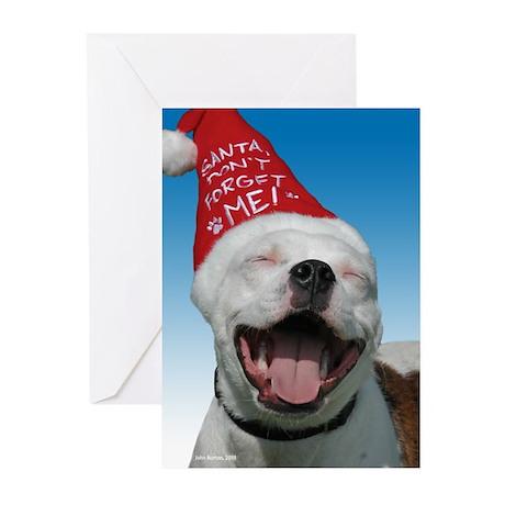 Pit Bull JOY Greeting Cards (Pk of 20)