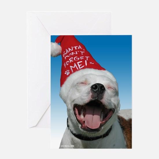 Pit Bull JOY Greeting Card