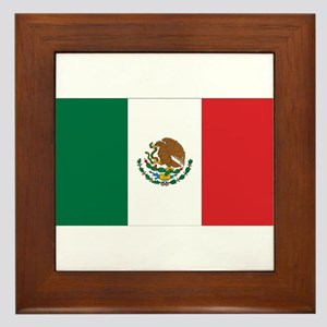 Mexican Flag Framed Tile