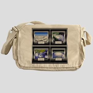 Hurricane Messenger Bag
