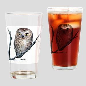 saw-whet owl Drinking Glass