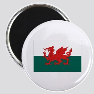 Welsh Flag Magnet