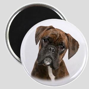 Brindle Boxer Magnet