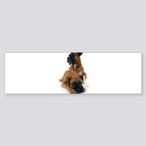 Boxers 2 Sticker (Bumper)