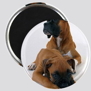 Boxers 2 Magnet
