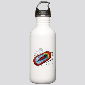 Bacteria Diagram Stainless Water Bottle 1.0L
