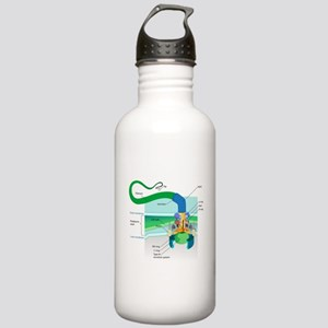 Morphology Stainless Water Bottle 1.0L
