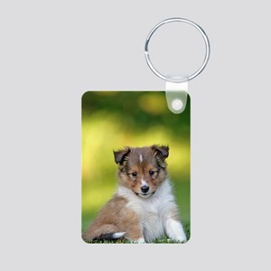Sweet Sheltie puppy Keychains