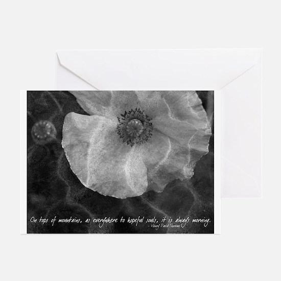 """""""Poppy"""" Thoreau Quote Photo Notecards (Set of 6)"""