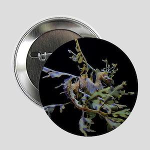 "Leafy Backside 2.25"" Button"