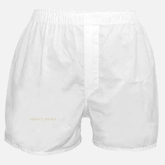 cancer sucks. (words to live Boxer Shorts