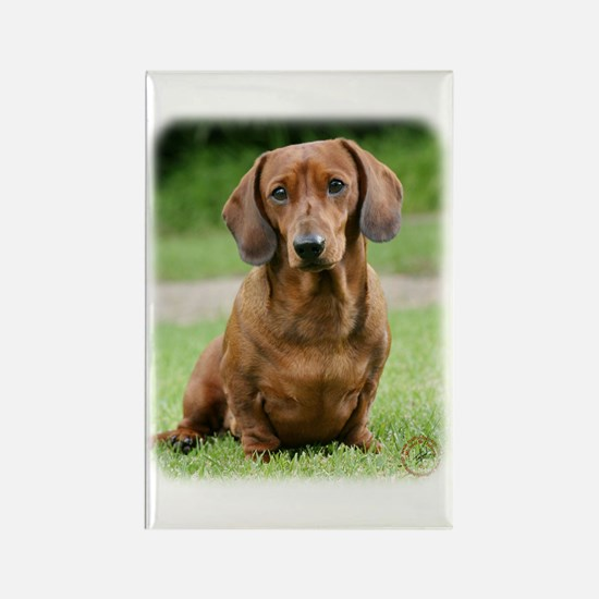 Dachshund 9Y151D-281_2 Rectangle Magnet