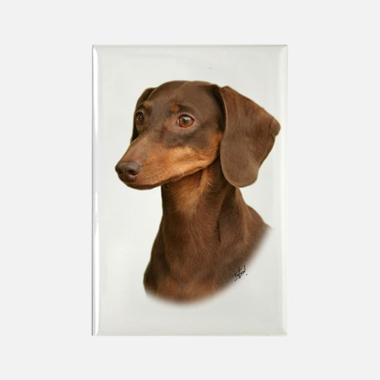 Dachshund 9Y420D-379 Rectangle Magnet