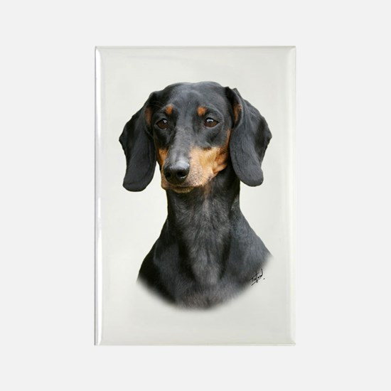 Dachshund 9Y426D-158_2 Rectangle Magnet