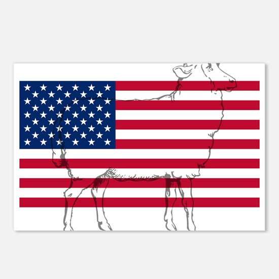 USA Sheep Postcards (Package of 8)