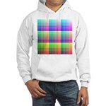Divided Color Chart Hooded Sweatshirt