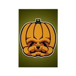 Jack-O'-Lantern Rectangle Magnet