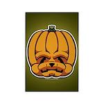 Jack-O'-Lantern Rectangle Magnet (10 pack)