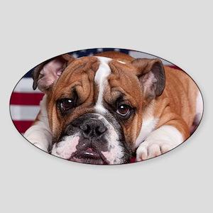 Patriotic Bulldog Sticker (Oval)