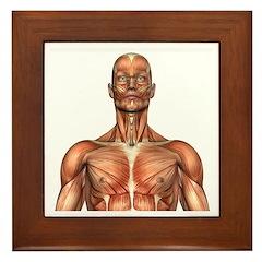 Visible Man Head Shot Framed Tile