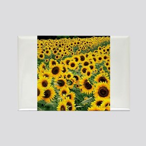 Sunflower Rectangle Magnet