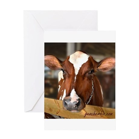 Cow 1 Greeting Card