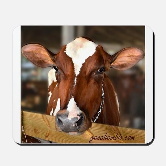 Cow 1 Mousepad