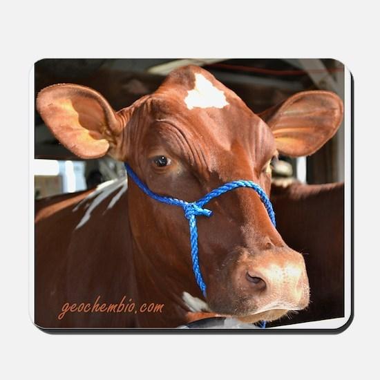 Cow 2 Mousepad