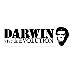 Viva Darwin Evolution! 42x14 Wall Peel