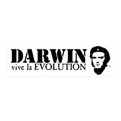 Viva Darwin Evolution! 21x7 Wall Peel