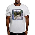Olmstead Point t-shirt--ash grey