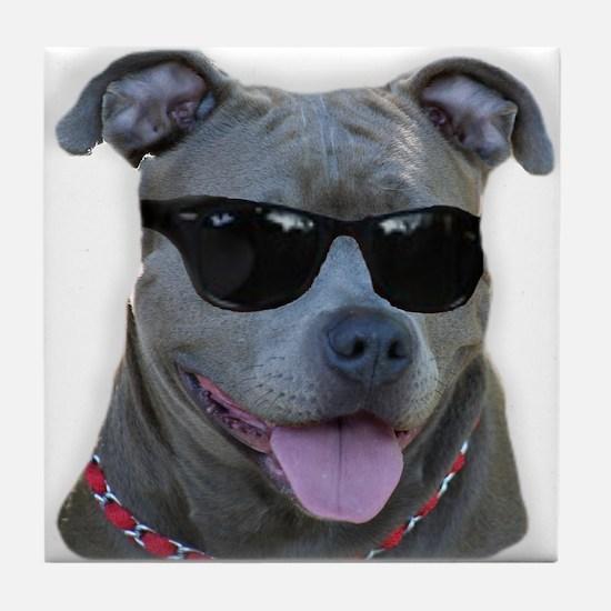 Pitbull in sunglasses Tile Coaster