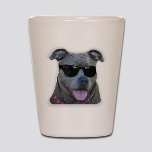 Pitbull in sunglasses Shot Glass