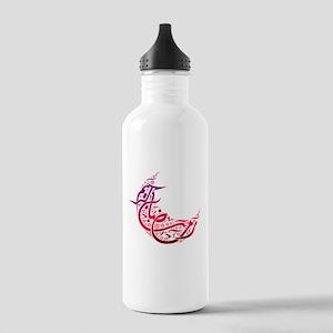 Ramadan Kareem Crescent Stainless Water Bottle 1.0