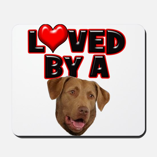 Loved by a Chesapeake Bay Ret Mousepad