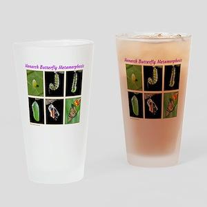 Monarch Metamorphosis Drinking Glass
