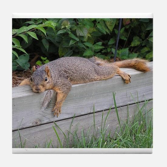 Laying squirrel Tile Coaster