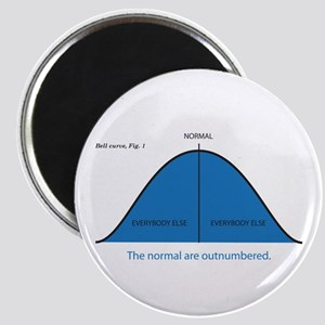 Normal bell curve Magnet