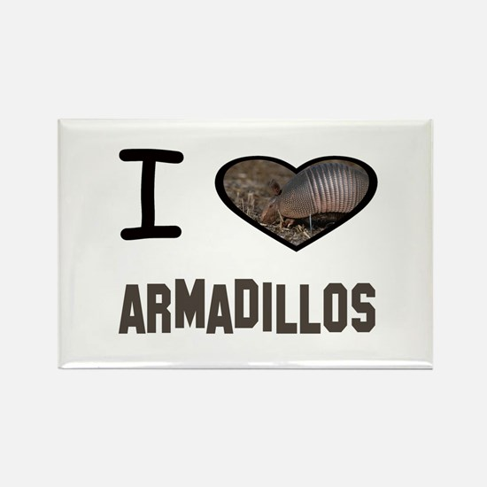 Cute Armadillo Rectangle Magnet (10 pack)