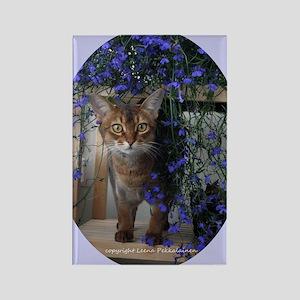 Flower Cat Oval Rectangle Magnet