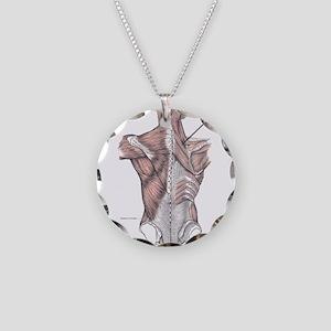 Musculus rhomboideus minor Necklace Circle Charm