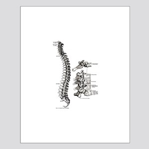 spine Small Poster