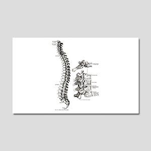 spine Car Magnet 20 x 12