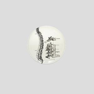 spine Mini Button
