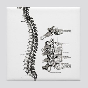 spine Tile Coaster