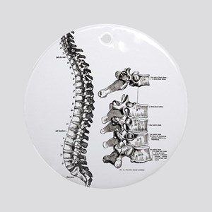 spine Ornament (Round)