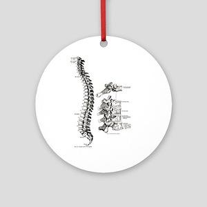 spine Ornament (Round)