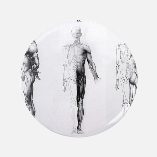 "full body anatomy 3.5"" Button"